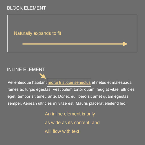 Block and Inline Elements
