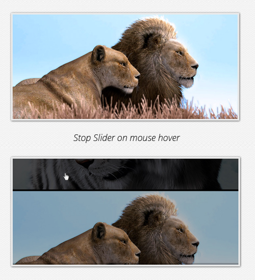 Stop slider on mouse hover