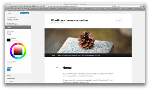 Using the WordPress theme customizer with the Twenty Ten theme.