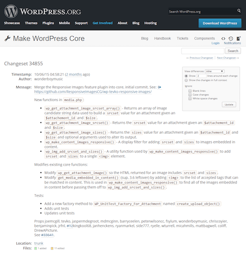 With WP version 4.4 the RICG Responsive Images plugin has been merged into WordPress core