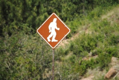Wayfinding and Typographic Signs - big-foot-watch-zone