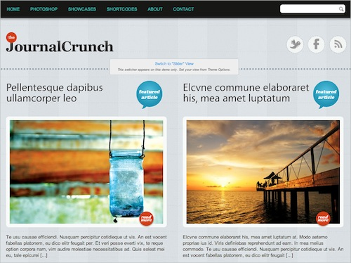 Journal Crunch Free WP Theme