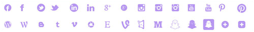 Social icons (both well-known networks and smaller industry-specific ones)