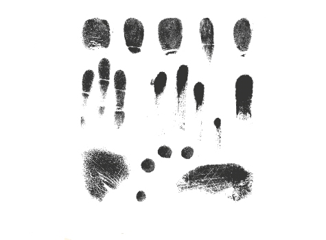 Fingerprint Vectors