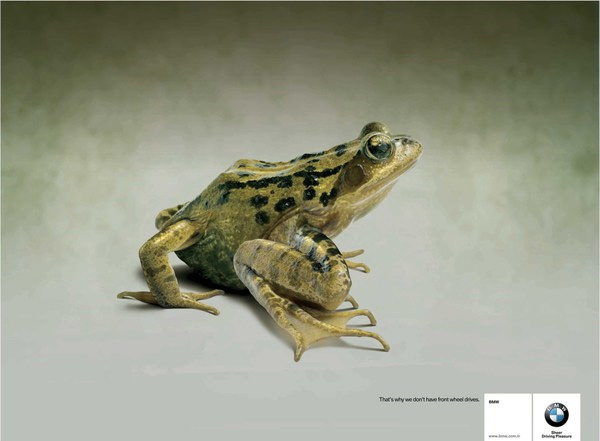 BMW Frog