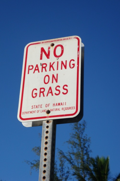 Wayfinding and Typographic Signs - no-parking-on-grass