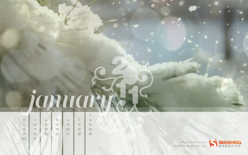 Smashing Wallpaper - January 2011