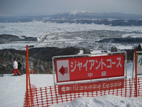 Wayfinding and Typographic Signs - warning-of-difficulty-ski-run-signage-japan