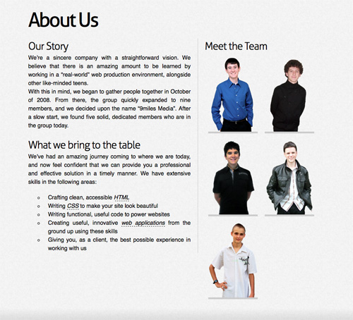 Screenshot  Brief Company Profile Sample