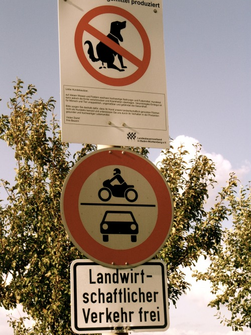 Wayfinding and Typographic Signs - dont-drop-or-drive