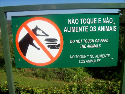 Wayfinding and Typographic Signs - do-not-feed-animals