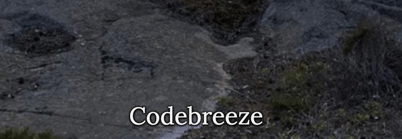 Codebreeze 2020
