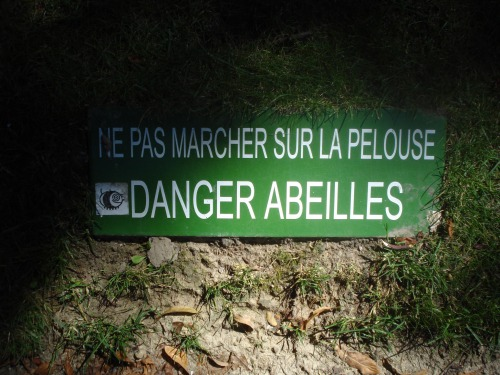 Wayfinding and Typographic Signs - danger-bees