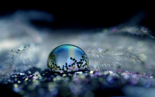 Mind-Blowing Photos - Glittery Ball