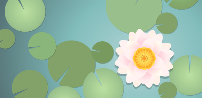 How To Create A Water Lily In Illustrator
