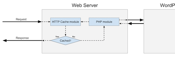 Web server HTTP cache