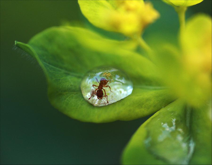 Beautiful Photography -