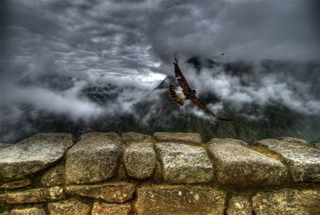 HDR Photos - Caracara takes off