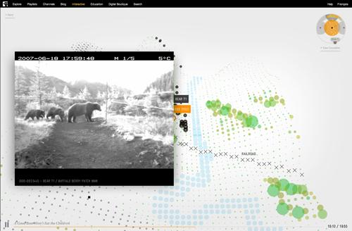 bear71-story-site