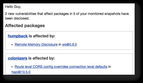 Snyk Sample New Vulnerability Notification