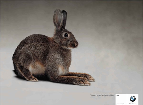 BMW Rabbit