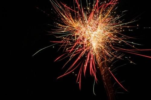 Fireworks Photos - Fireworks!!!