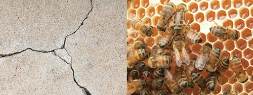 Classic examples of the stacking and packing pattern: Breaks in a cement sidewalk and the beehive