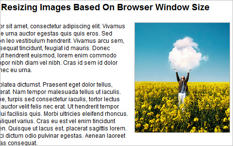 Quick Tip - Resizing Images Based On Browser Window Size