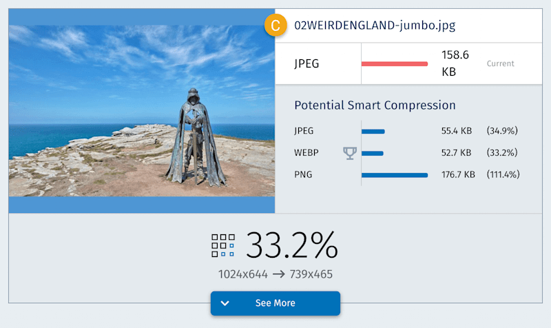 A screenshot of the individual image report