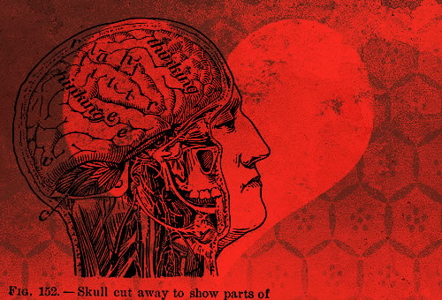 head and heart