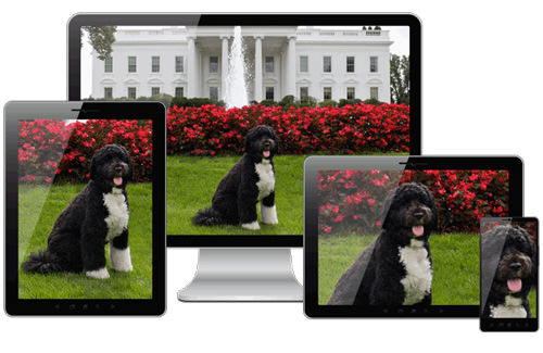 Picturefill is an responsive image approach that mimics the proposed picture element using divs.
