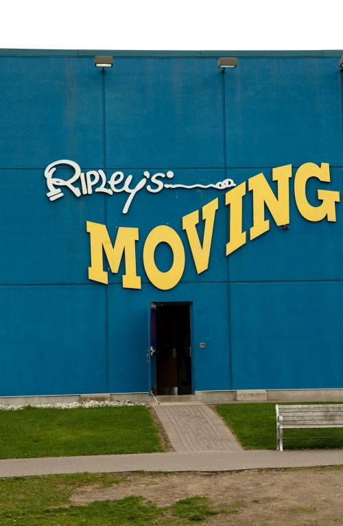 Wayfinding and Typographic Signs - ripleys-moving-indeed
