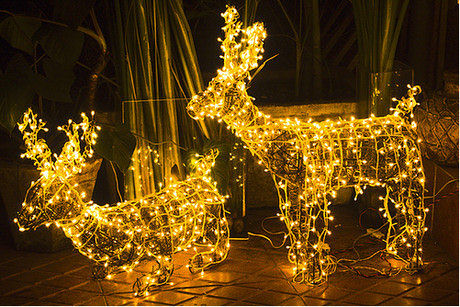 Lightning Photography - Santa's Reindeer - Light Sculpture