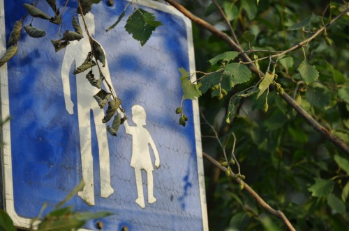 Wayfinding and Typographic Signs - nature-walk