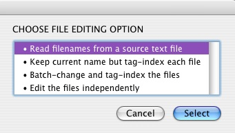 Rename Files screenshot on second level script options