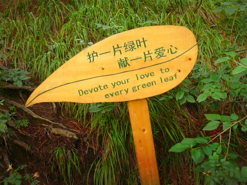 Wayfinding and Typographic Signs - devote-your-love-to-every-green-leaf