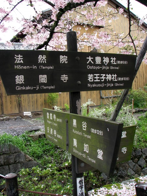 Wayfinding and Typographic Signs - choosing-the-right-way