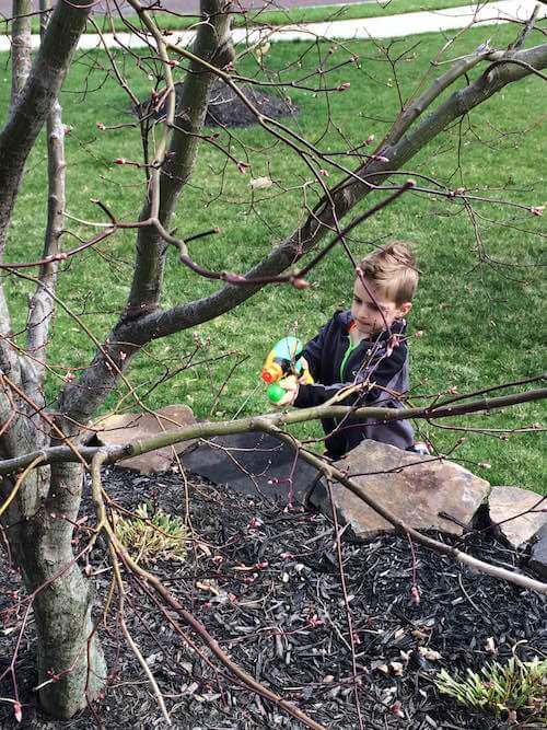 Child participant spraying plants with a water gun as part of the Nature Ninja activity.