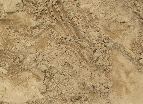 texture9