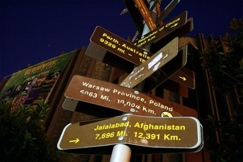 Wayfinding and Typographic Signs - international-tree-of-direction