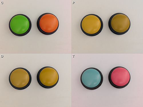 Seen through Chromatic Vision Simulator, the green and orange buttons show normal (C), protanope (P), deuteranope (D) and tritanope (T).