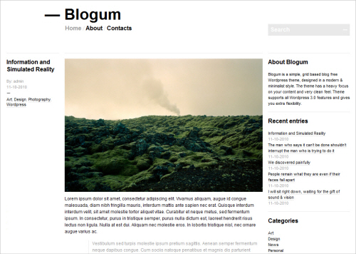 Blogum Free WP Theme