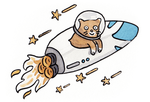 A cat in a rocket — the mascot of Yarn