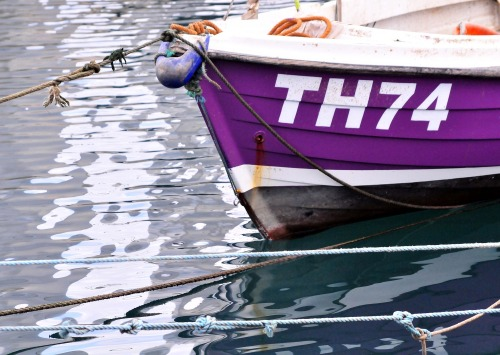 Wayfinding and Typographic Signs - fishing-boat-torquay