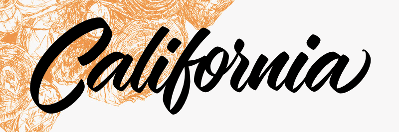 UX Camp California 2018