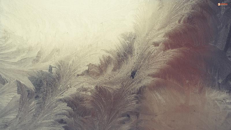 Smashing Wallpaper - january 10