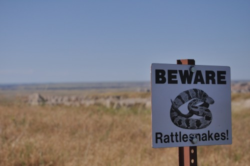 Wayfinding and Typographic Signs - beware-of-rattlesnakes