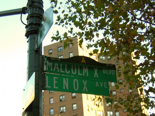 Wayfinding and Typographic Signs - malcom-x-blvd