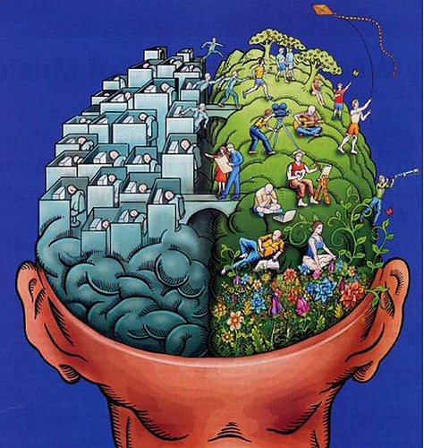 Artists depiction of the right and left brain.