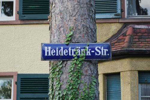 Wayfinding and Typographic Signs - nailed-street-sign